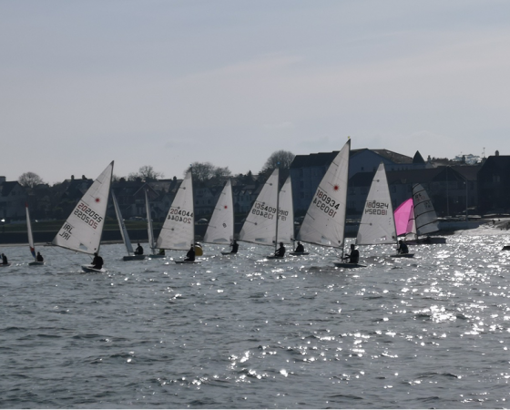 Boxing Day Regatta 2019
